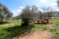 Moderna finca como nueva de estilo mediterráneo en Benidoleig - Lugar para perros