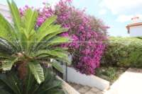 Villa mediterránea con encanto en Monte Solana - Jardín mediterráneo