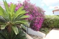 Charmante villa de vacances sur le Monte Solana - Jardin méditerranéen